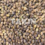 Tyson Chick Peas | Beans Suppliers
